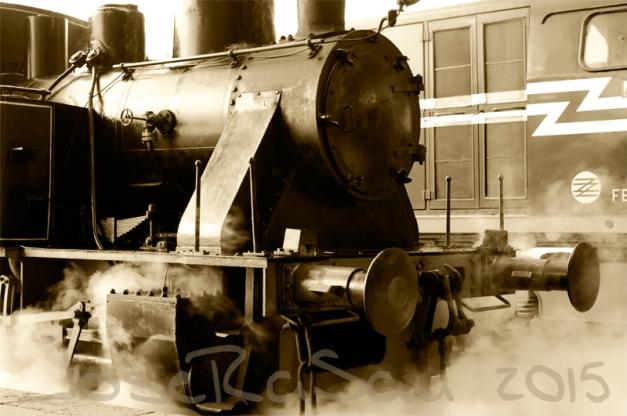 Fotografía Realizada En El Museo Del Ferrocarril De Gijón